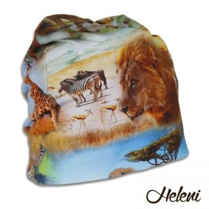 2016c-safari