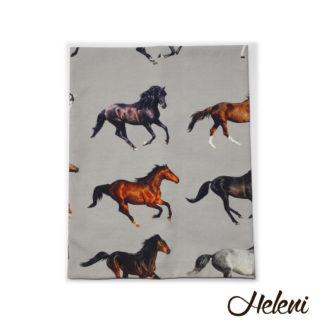 Kaelussall hobustega